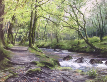 West Cork Watercolour Gallery Preview